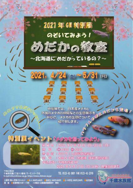 【会員情報】サケのふるさと千歳水族館 2021年GW特別展『のぞいてみよう!めだかの教室』実施中